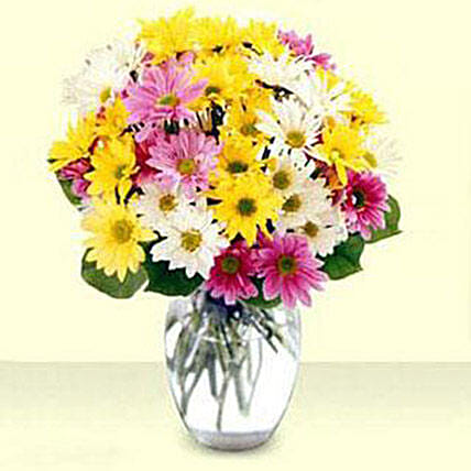 Mixed Daisy Bouquet: Flower Delivery in USA