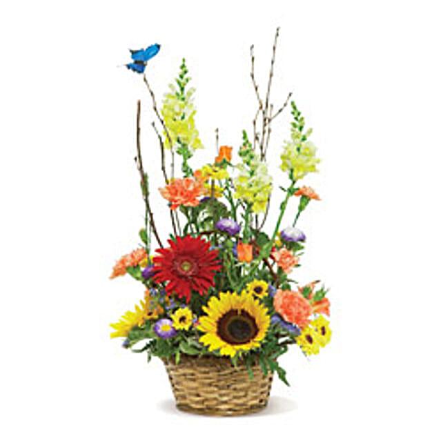 Butterfly Garden USA: Flower Delivery in Boston